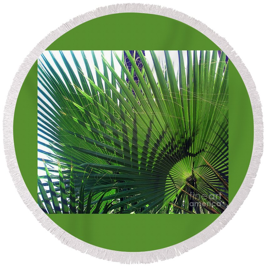 Palm Tree Round Beach Towel featuring the photograph Palm Tree, Big Leafs by Sofia Metal Queen