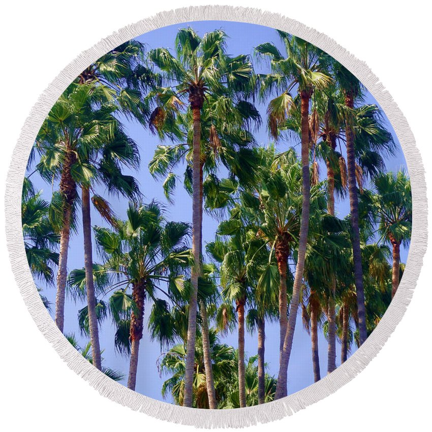 Palm Round Beach Towel featuring the photograph Palm Trees. California, Sunny Beauty by Sofia Metal Queen
