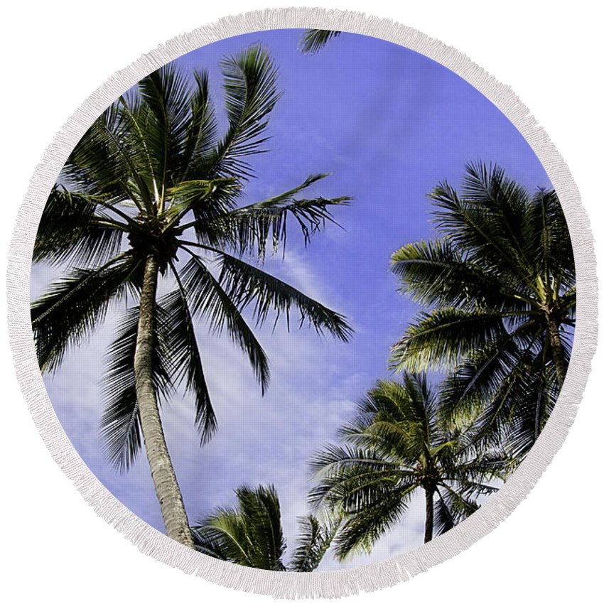 Palm Round Beach Towel featuring the photograph Palm Trees by Peter Lloyd