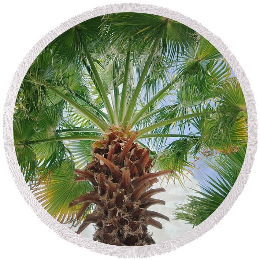 Palm Tree Round Beach Towel featuring the photograph Palmtastic by David Coleman