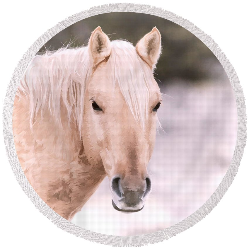 Horses Round Beach Towel featuring the photograph Palomino In The Snow by Athena Mckinzie
