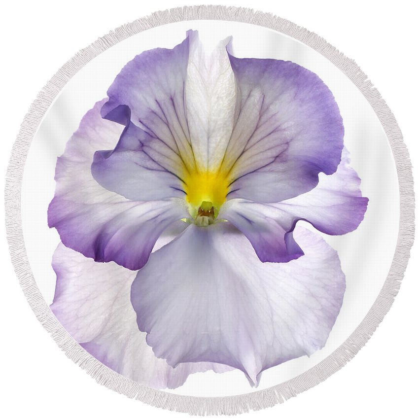 Pansy Genus Viola Round Beach Towel featuring the photograph Pansy by Tony Cordoza