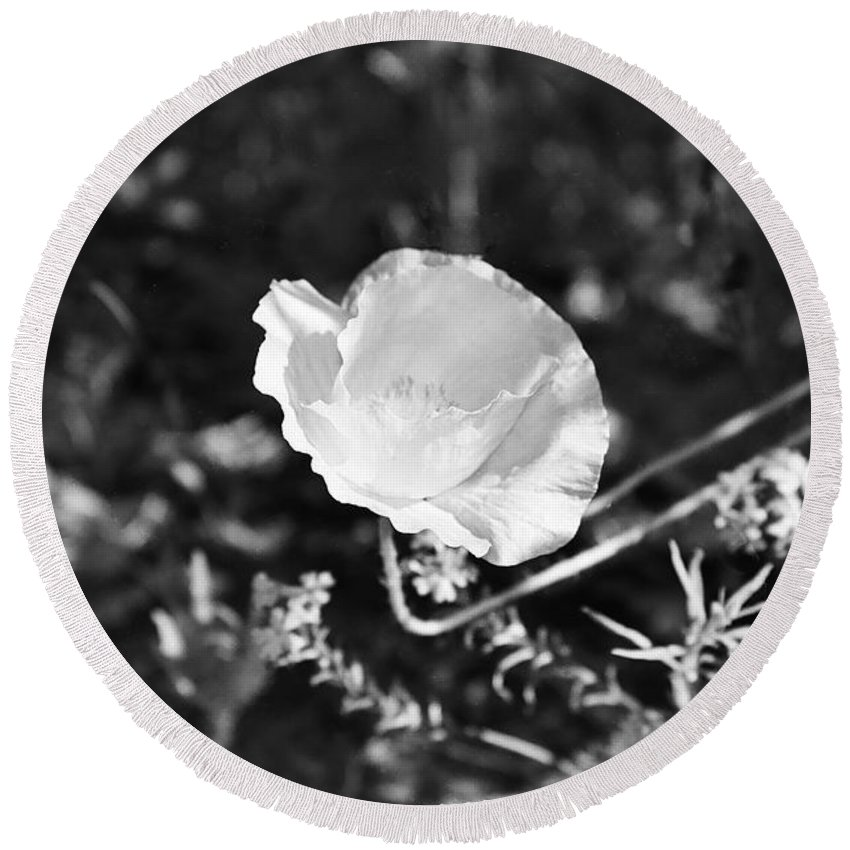 Flowers Round Beach Towel featuring the photograph Paper Flower In B And W by Kathy McClure