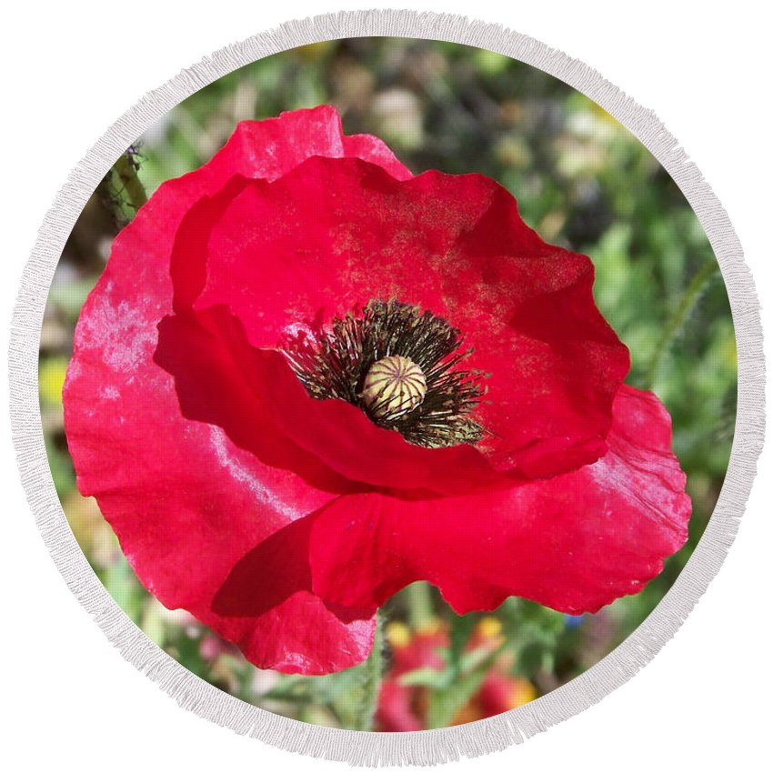 Red Round Beach Towel featuring the photograph Paper Flower by Kathy McClure