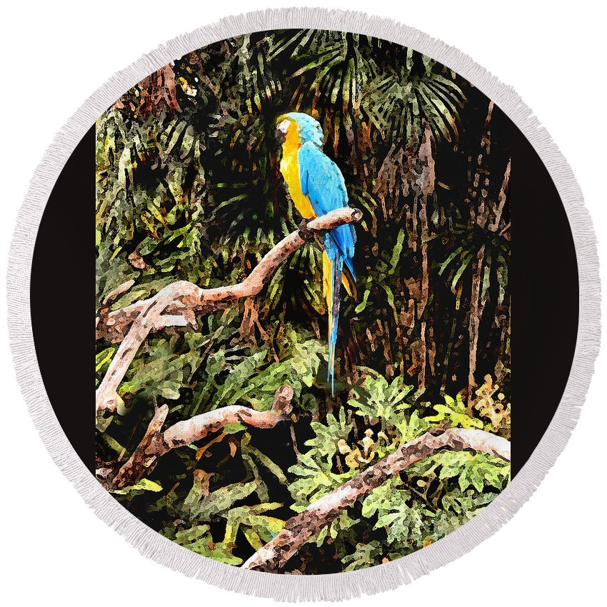 Parrot Round Beach Towel featuring the photograph Parrot by Steve Karol