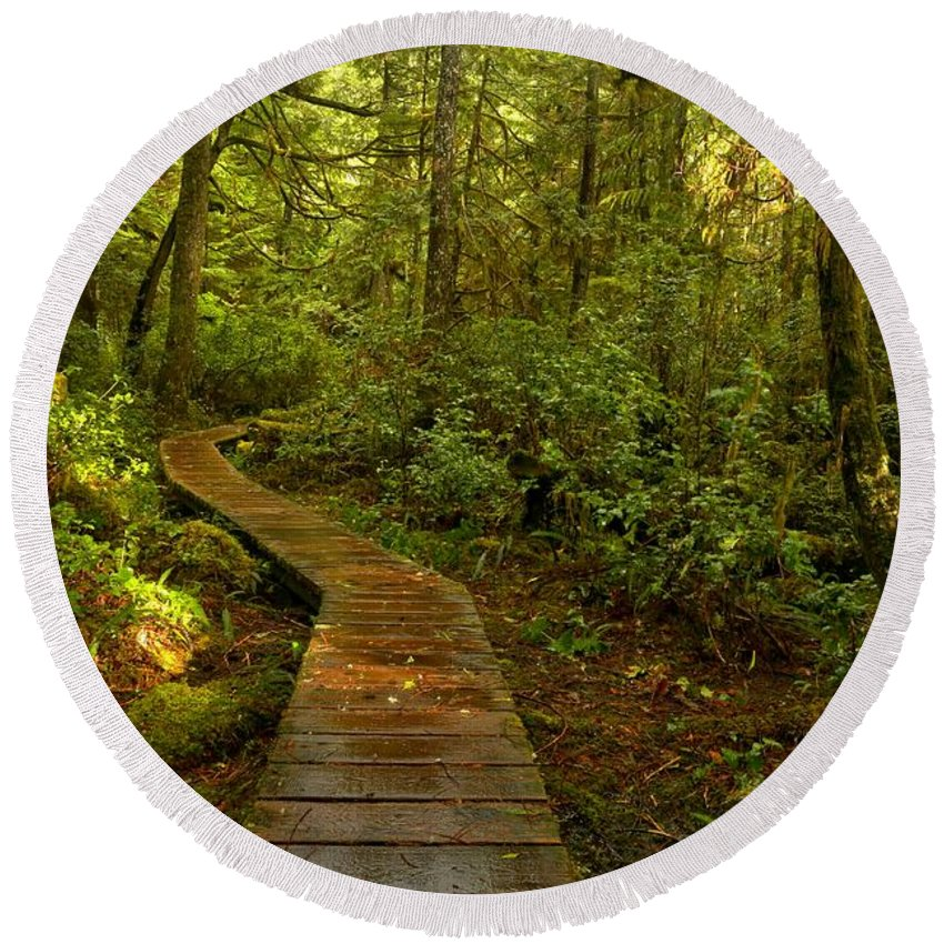 Rainforest Path Round Beach Towel featuring the photograph Path To Serenity by Adam Jewell