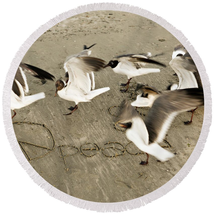Bird Round Beach Towel featuring the photograph Peace Dance by Marilyn Hunt