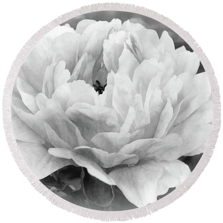 Peony Round Beach Towel featuring the photograph Peace In The Garden by Leda Robertson