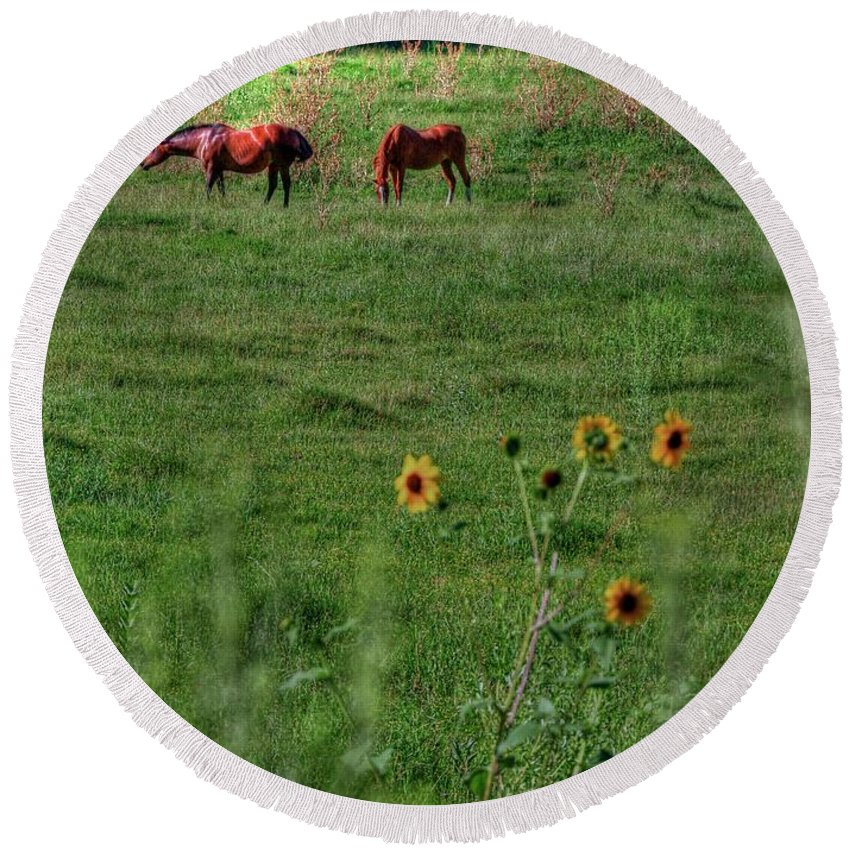 Scenic Round Beach Towel featuring the photograph Peaceful Meadow by Douglas Settle