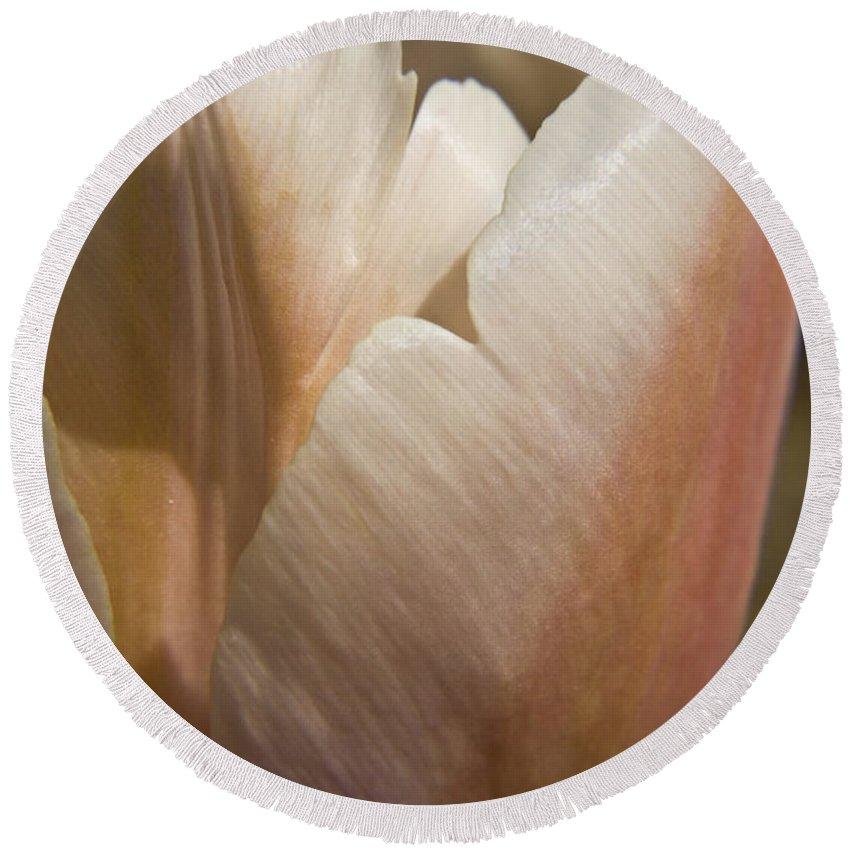 Peach Round Beach Towel featuring the photograph Peach Tulip by Teresa Mucha