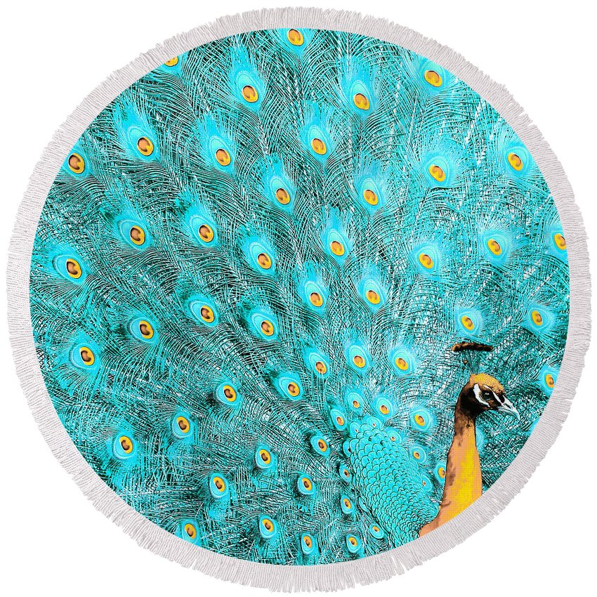 Teal Round Beach Towel featuring the photograph Peacock 1 by Alicia Zimmerman