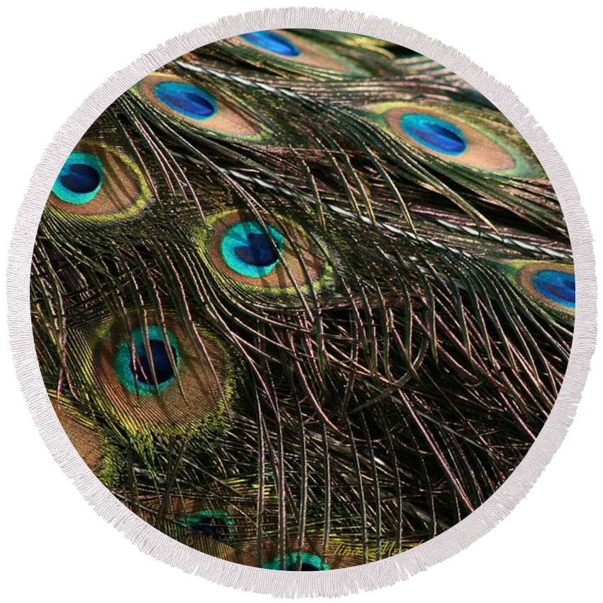 Peacock Round Beach Towel featuring the photograph Peacock Feathers by Tina Meador