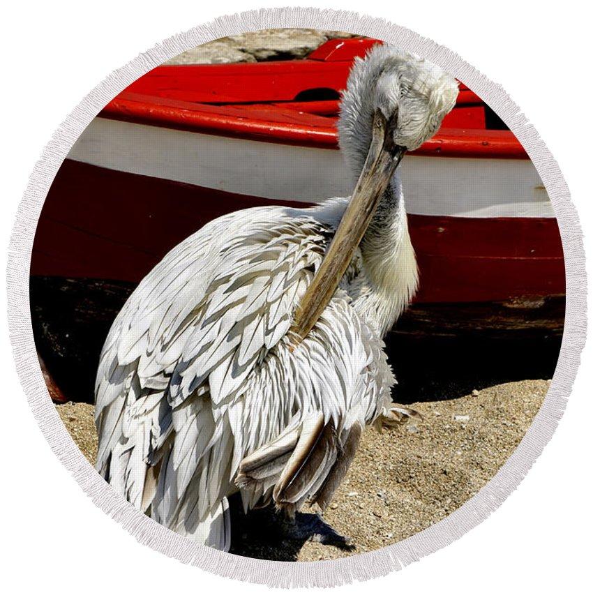Pelican Round Beach Towel featuring the photograph Pelican In Mykonos II by Madeline Ellis