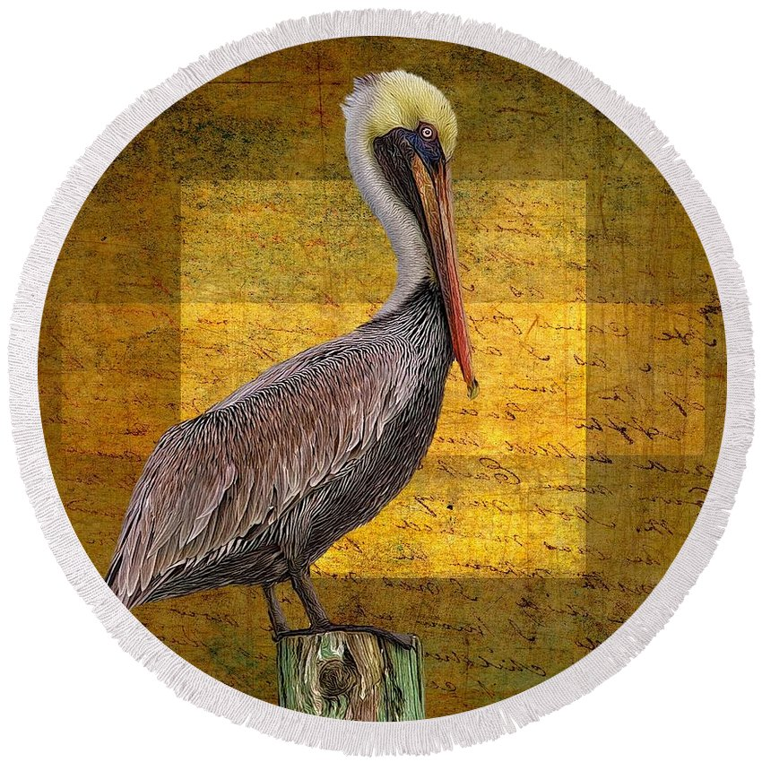 Alicegipsonphotographs Round Beach Towel featuring the photograph Pelican Poetry by Alice Gipson