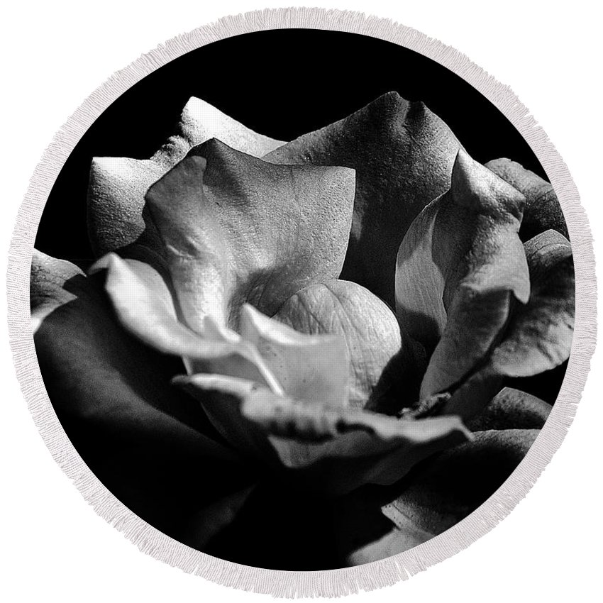 Clay Round Beach Towel featuring the photograph Penetrating The Rose by Clayton Bruster