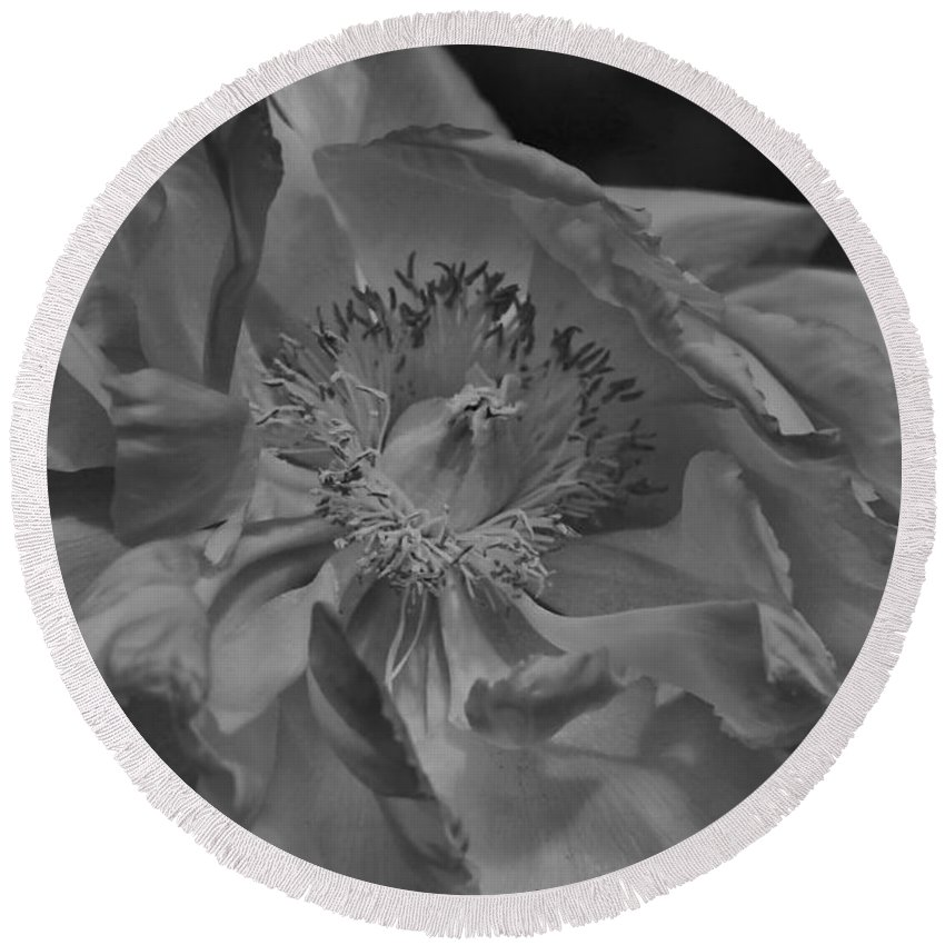 Peonie Round Beach Towel featuring the photograph Peonie In Bw by Deborah Benoit