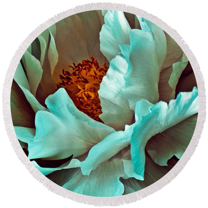 Peony Round Beach Towel featuring the photograph Peony Flower by Chris Lord