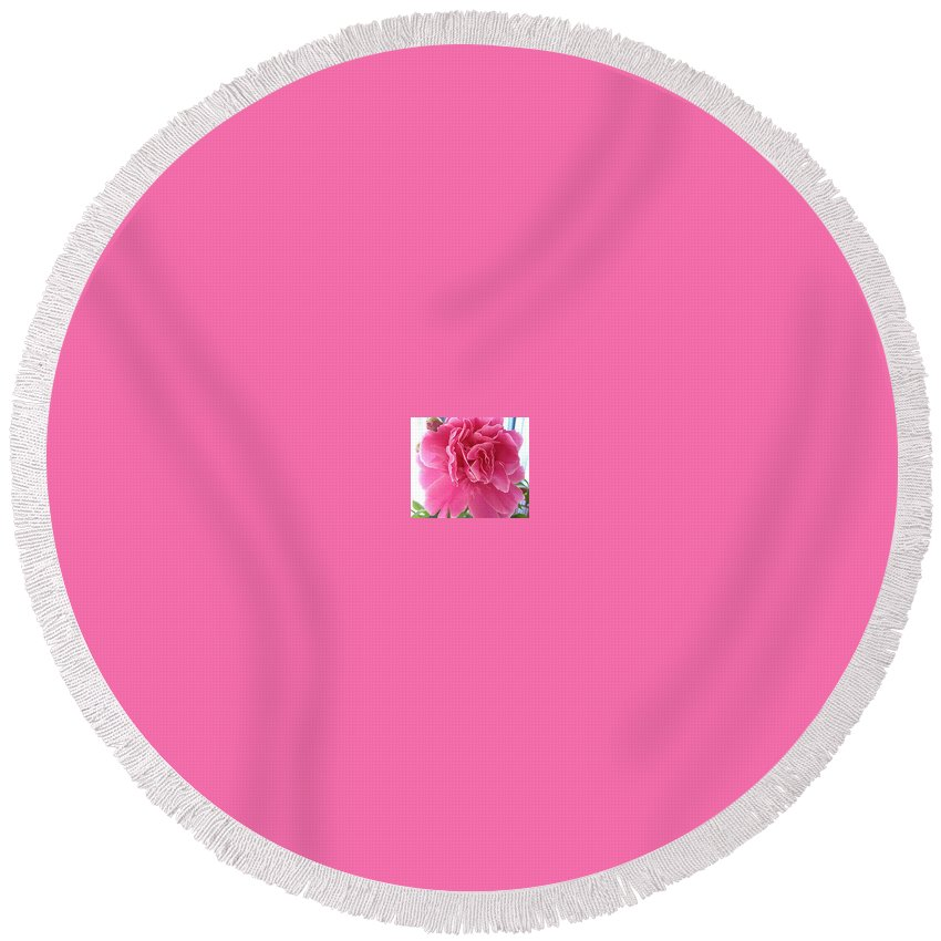 Flower Round Beach Towel featuring the photograph Peony by Judith Morris