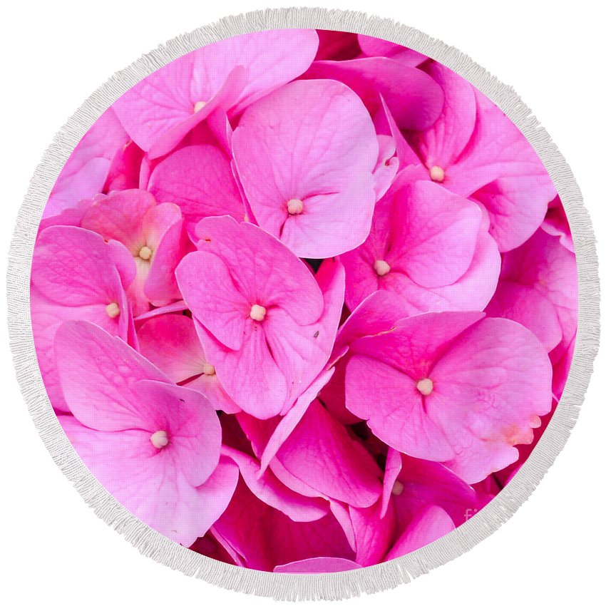 Flowers Round Beach Towel featuring the photograph Petals by Lisa Richards