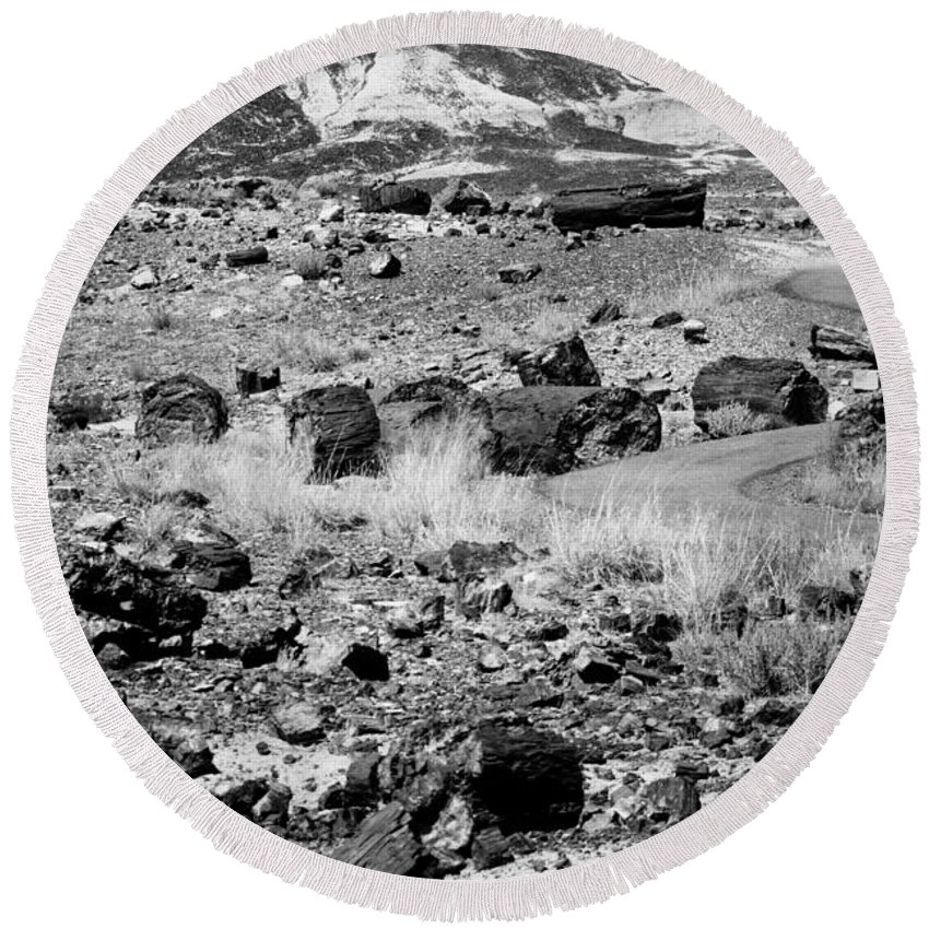 Petrified Forest Round Beach Towel featuring the photograph Petrified Forest National Park #2 by Robert J Caputo
