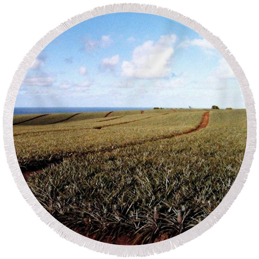 1986 Round Beach Towel featuring the photograph Pineapple Fields by Will Borden