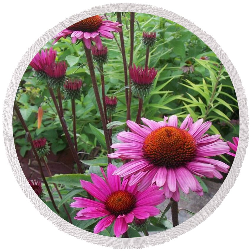 Flowers Round Beach Towel featuring the photograph Pink All Over by Anita Burgermeister