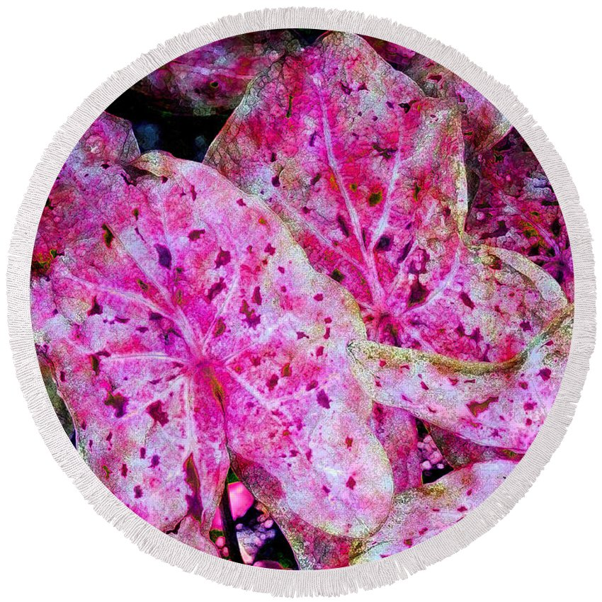 Diane Dimarco Art Round Beach Towel featuring the photograph Pink Caladium by Diane DiMarco