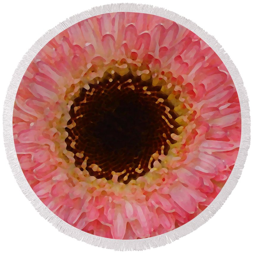 Daisy Round Beach Towel featuring the painting Pink And Brown Gerber Center by Amy Vangsgard