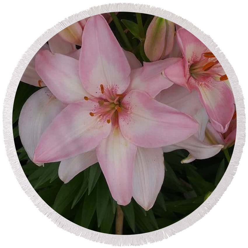 Pink Round Beach Towel featuring the photograph Pink Asiatic Lilies 1 by Dawn Wells