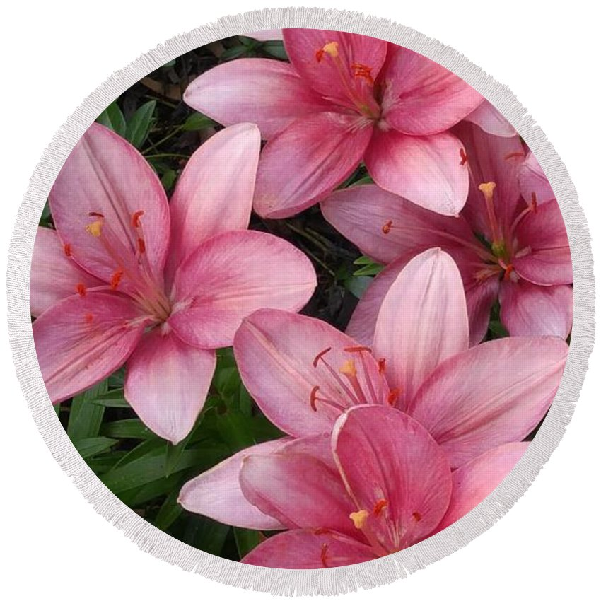 Pink Round Beach Towel featuring the photograph Pink Asiatic Lilies 2 by Dawn Wells