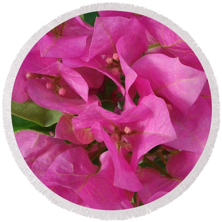 Flowers Round Beach Towel featuring the photograph Pink Flower Composition by Olga Zavgorodnya