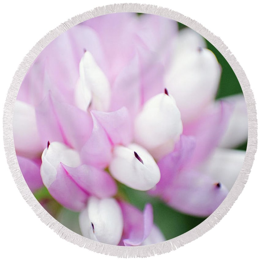 Flower Round Beach Towel featuring the photograph Pink Flower by Eric Killian
