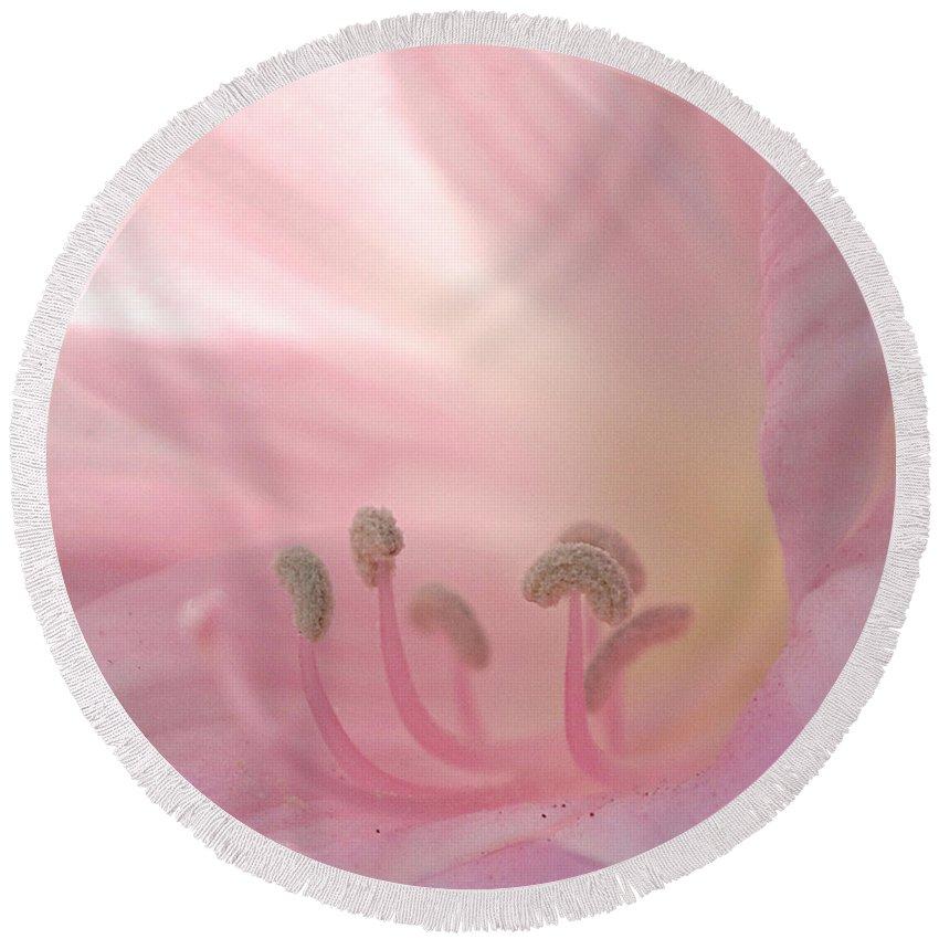 Flower Round Beach Towel featuring the photograph Pink Flower by Jill Reger