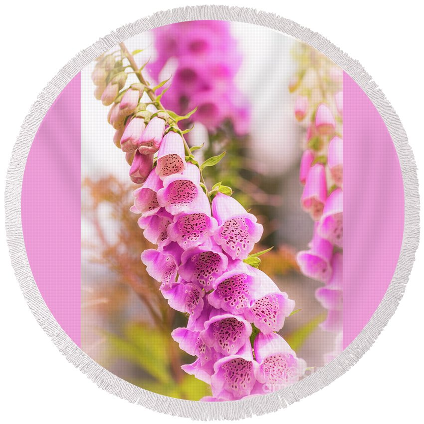 Flower Round Beach Towel featuring the photograph Pink Foxglove by Heather Hubbard