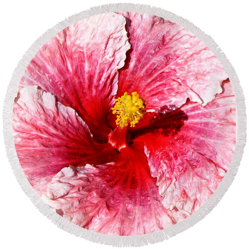 Flower Round Beach Towel featuring the photograph Pink Hibiscus Inspired By Georgia O'keefe by Anthony Jones