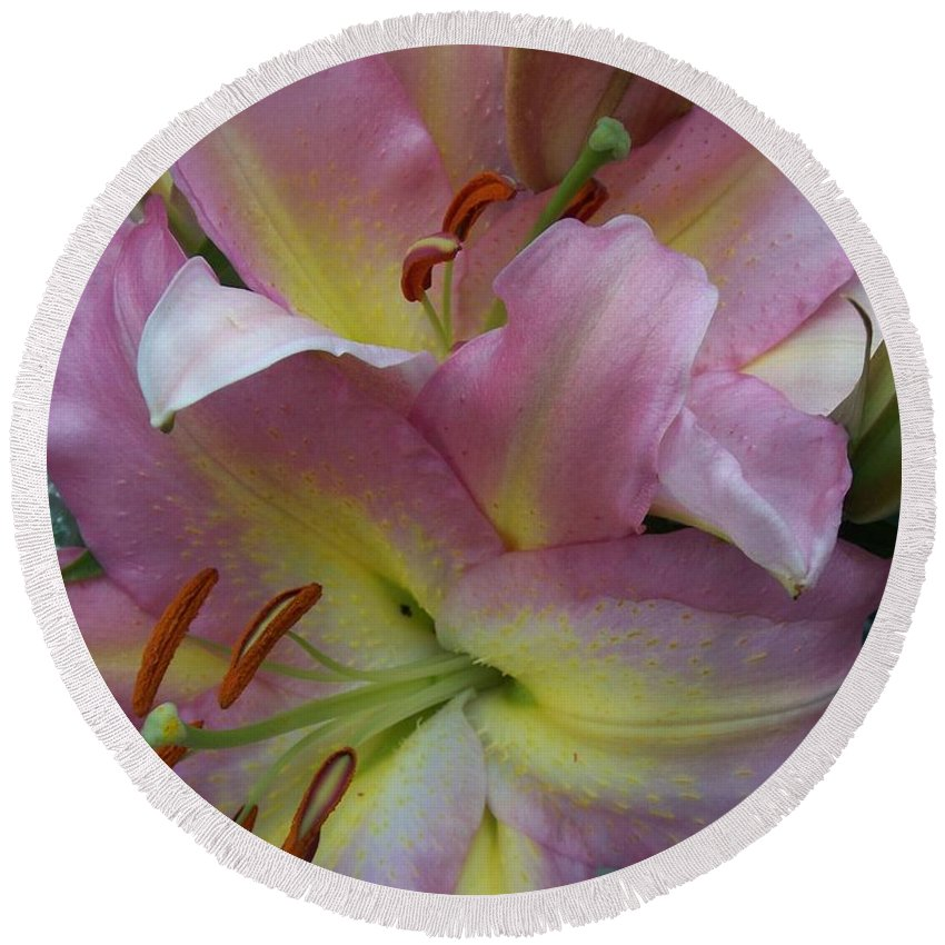 Flowers Round Beach Towel featuring the photograph Pink Lillies by Anita Burgermeister