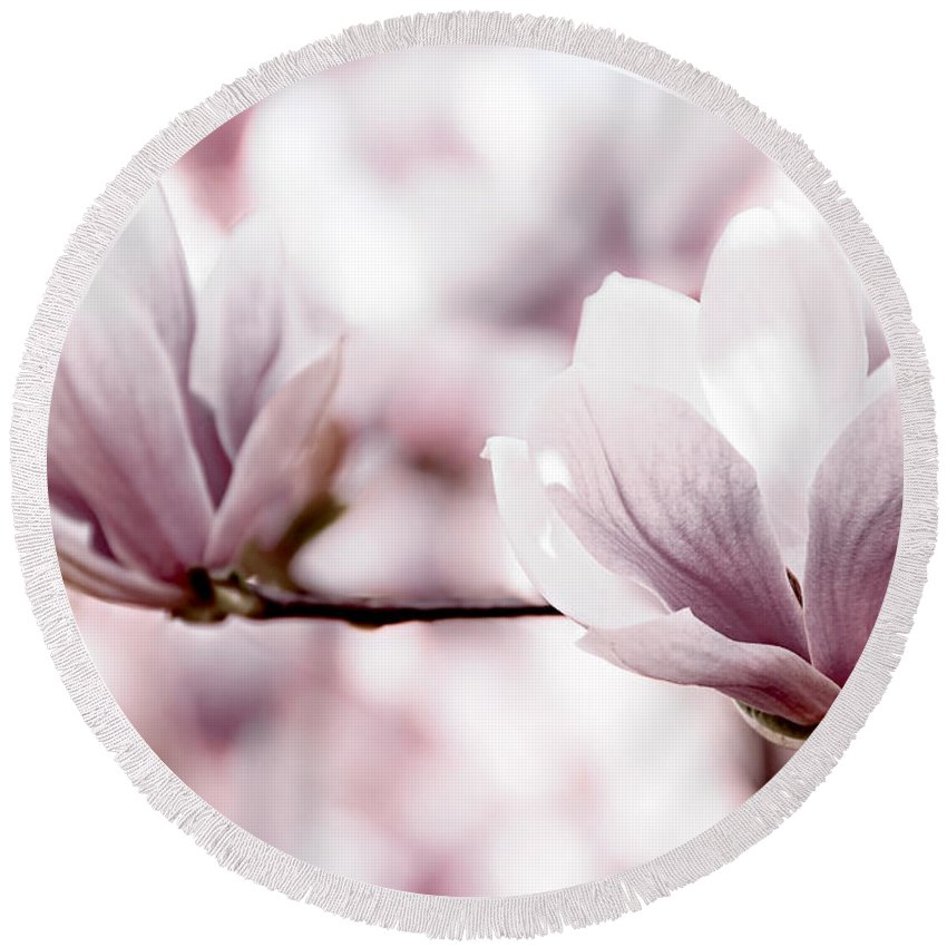 Magnolia Round Beach Towel featuring the photograph Pink Magnolia by Elena Elisseeva