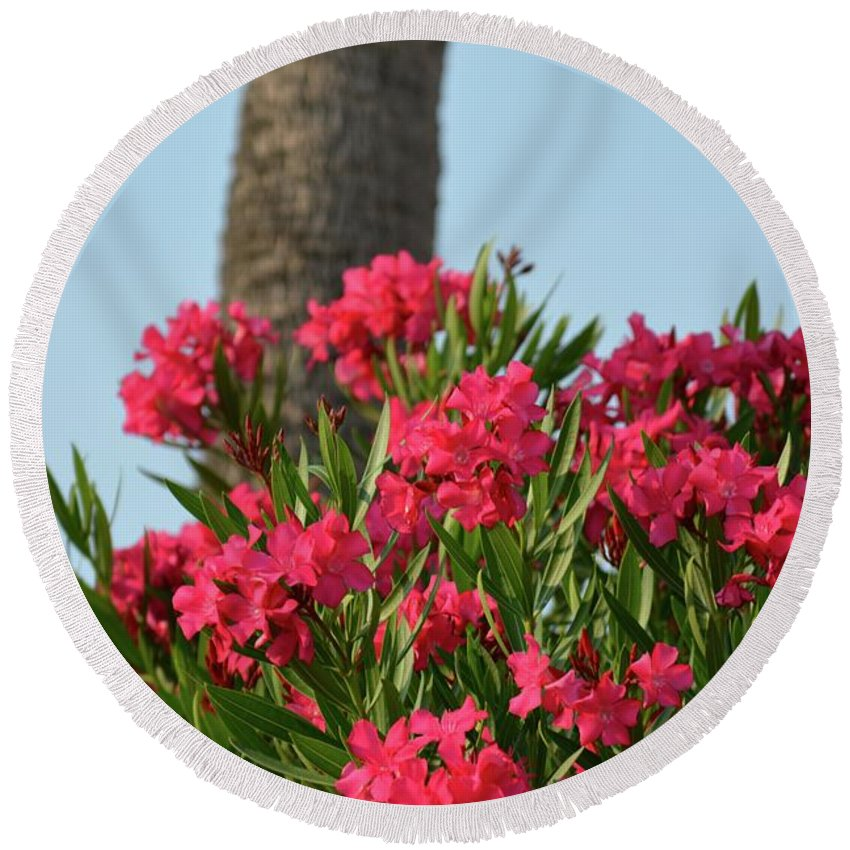 Oleander Round Beach Towel featuring the photograph Pink Oleander by Tamra Lockard