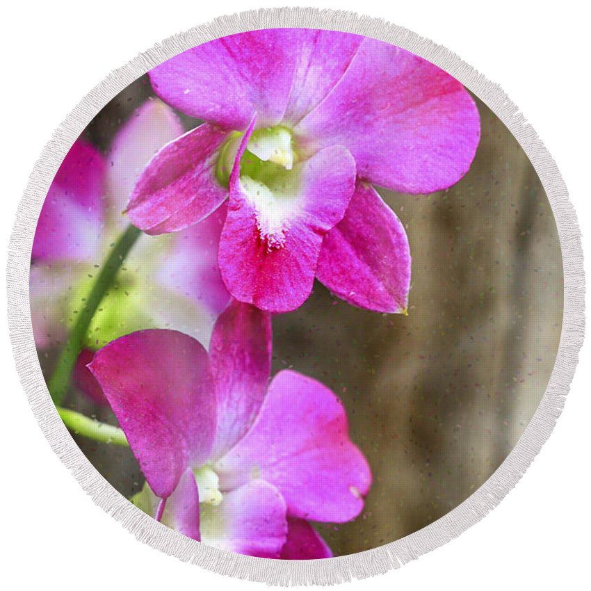 Orchids Round Beach Towel featuring the photograph Pink Orchid Duo by Deborah Benoit