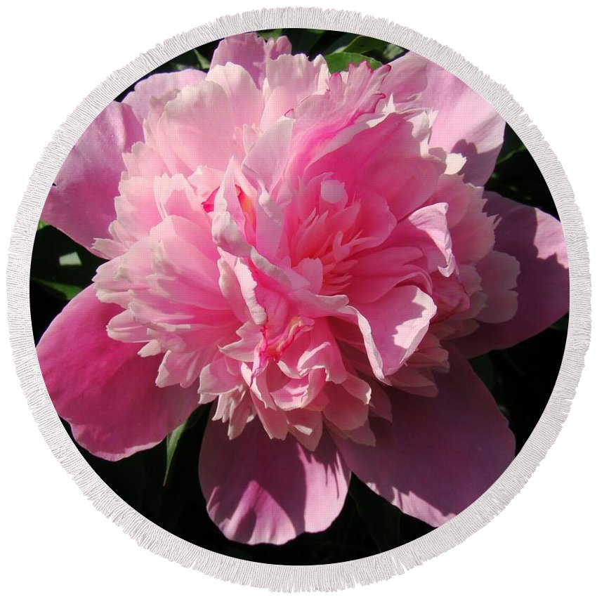 Flowers Round Beach Towel featuring the photograph Pink Peony by Sandy Keeton