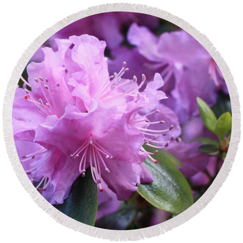 Flower Round Beach Towel featuring the photograph Light Purple Rhododendron With Leaves by Carol Groenen