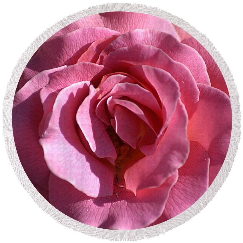 Clay Round Beach Towel featuring the photograph Pink Rose by Clayton Bruster