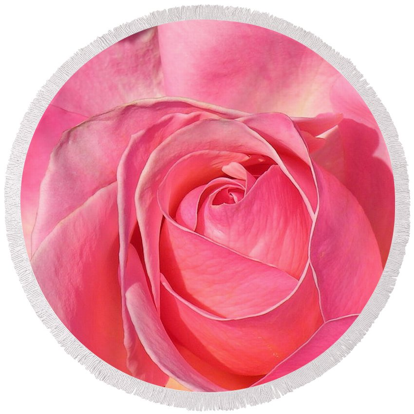 Canvas Print Round Beach Towel featuring the photograph Pink Rose by Diane Greco-Lesser