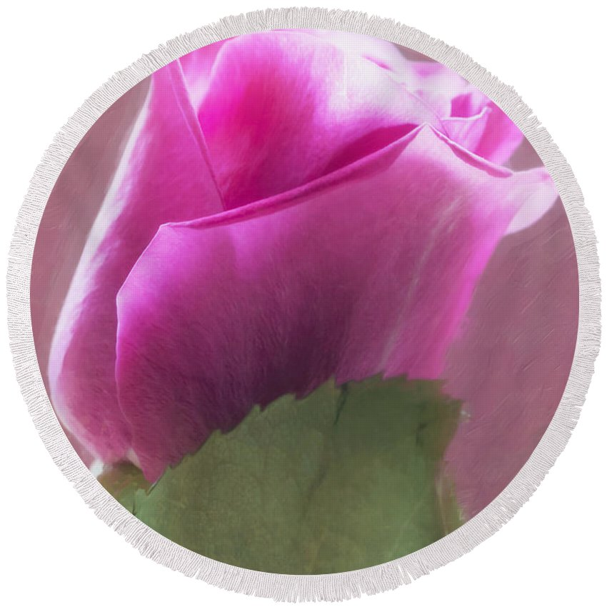 Home Decor Round Beach Towel featuring the photograph Pink Rose In Light by Hal Halli