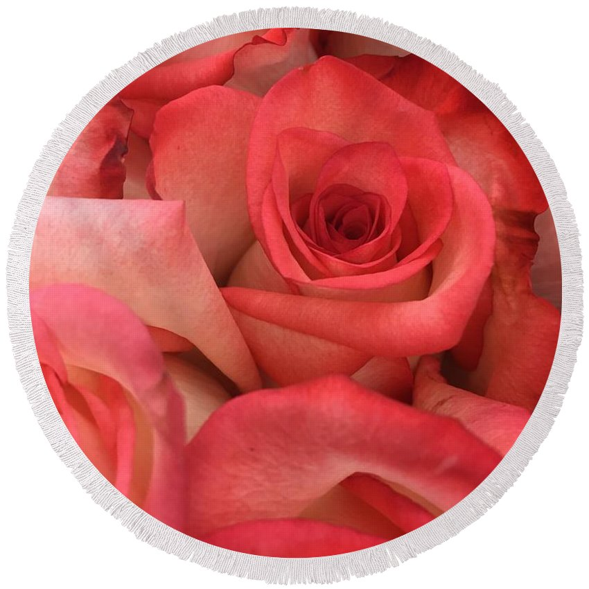 Roses Round Beach Towel featuring the photograph Pink Roses by Rachel Gilman