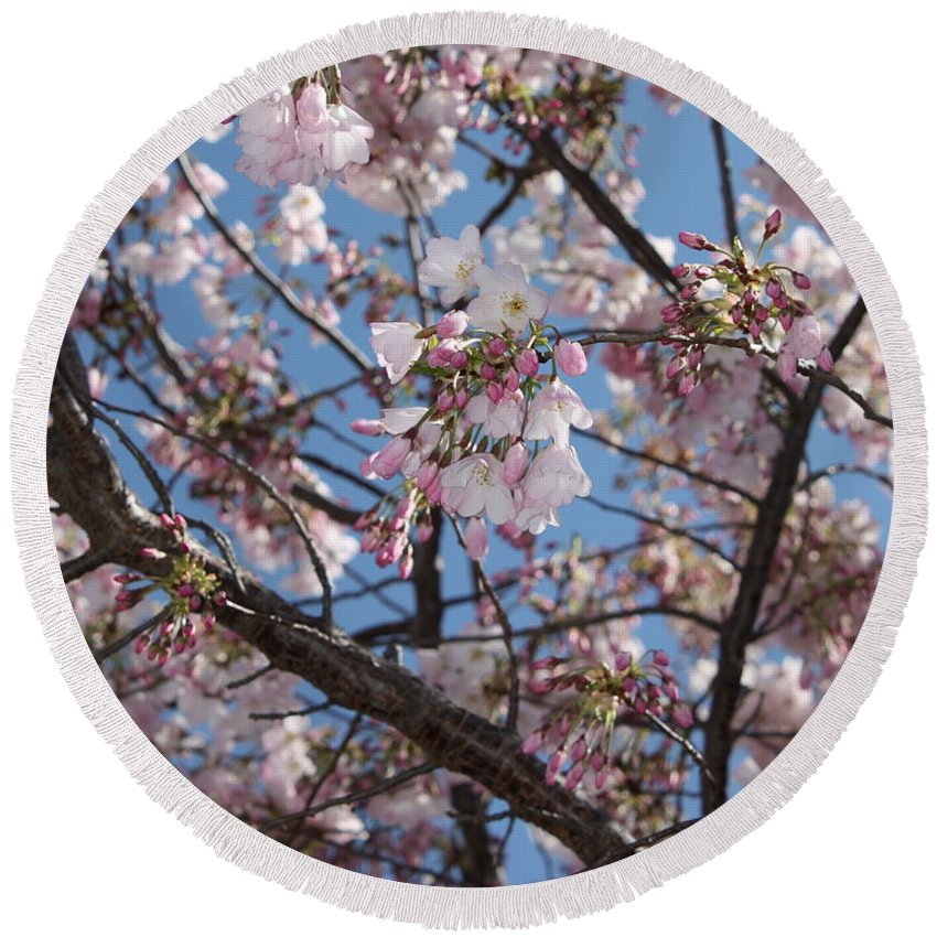 Spring Round Beach Towel featuring the photograph Pink Spring Blossoms by Carol Groenen