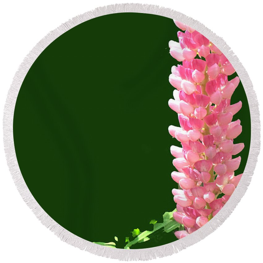 Flower Round Beach Towel featuring the photograph Pink Tower by Ian MacDonald