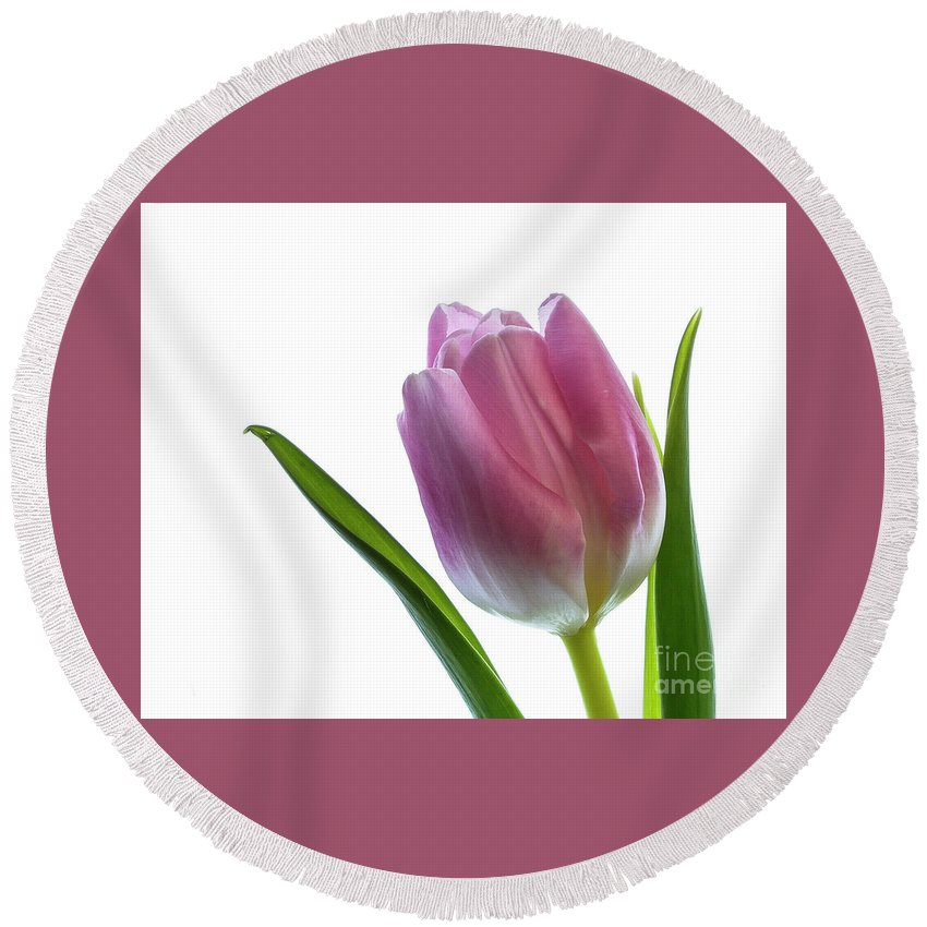 Flower Round Beach Towel featuring the photograph Pink Tulips 3 by Kelly Merlini