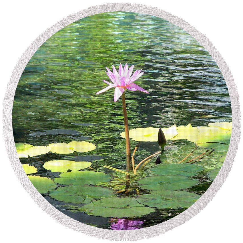 Flowers Round Beach Towel featuring the photograph Pink Water Lily Pad by Rogers