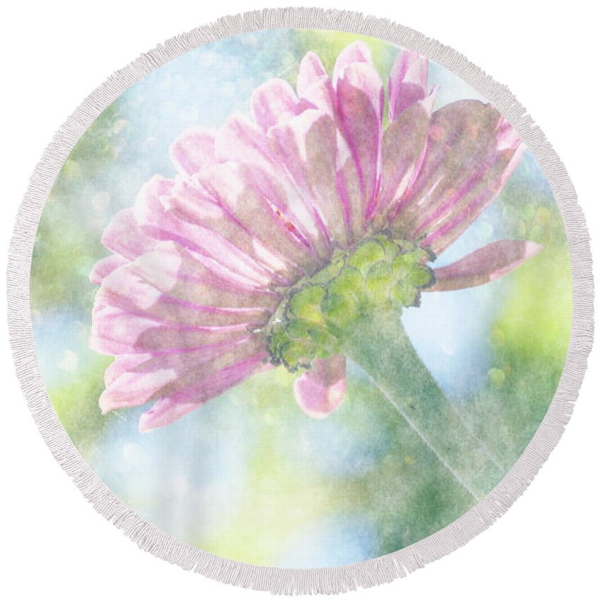 Zinnia Round Beach Towel featuring the photograph Pink Zinnia On Bokeh Background by Jim And Emily Bush